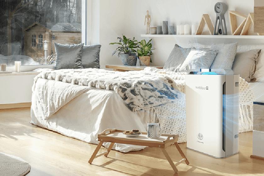 Jaki oczyszczacz powietrza sprawdzi się w Twoim domu? Poradnik